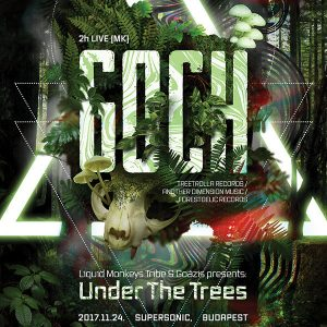 2017-11-24 | Under The Trees w/ Goch (MK)